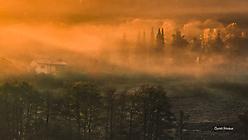Fichtelgebirge - Morgennebel