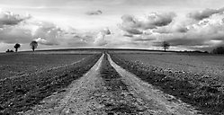 HM_Der Weg 1 Wersch