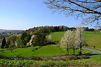 Landschaft02_PW