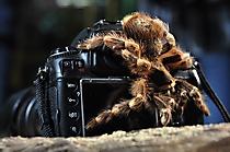 tolle Kamera