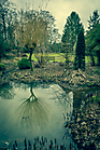 mystic-garden-72dpi-004