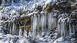 Winter - Eiszapfen