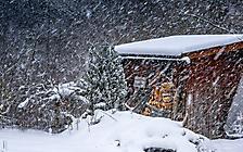 Winter - es schneit