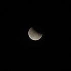 Mondfisternis