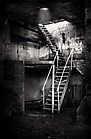 Homburger Papiermühle Treppe