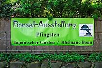 Bonsai-Team-Bonn